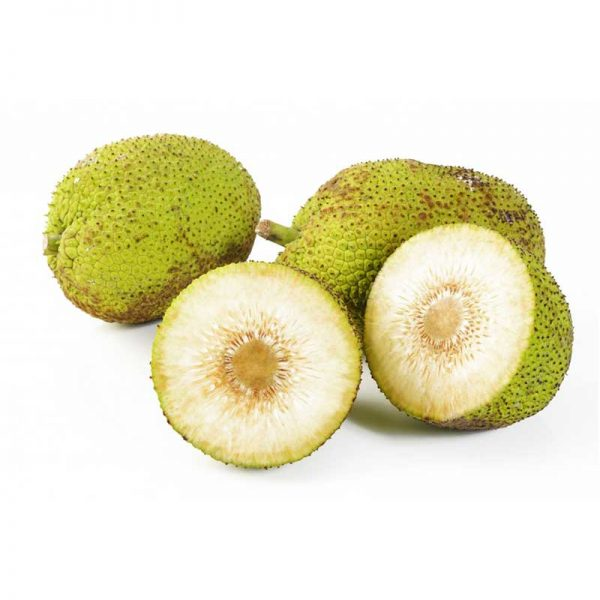 breadfruit-sri-lanka