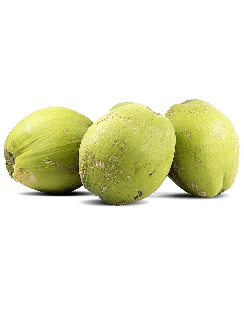 fresh-coconut-sri-lanka